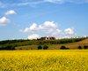 Reiterhof Szomor  Große Anzahl aktueller Bauernhäuser, Bauernhöfe, Reiterhöfe, alte Mühlen - hier finden auch Sie IHR Bauernhaus, Bauernhof, Reiterhof oder alte Mühle!